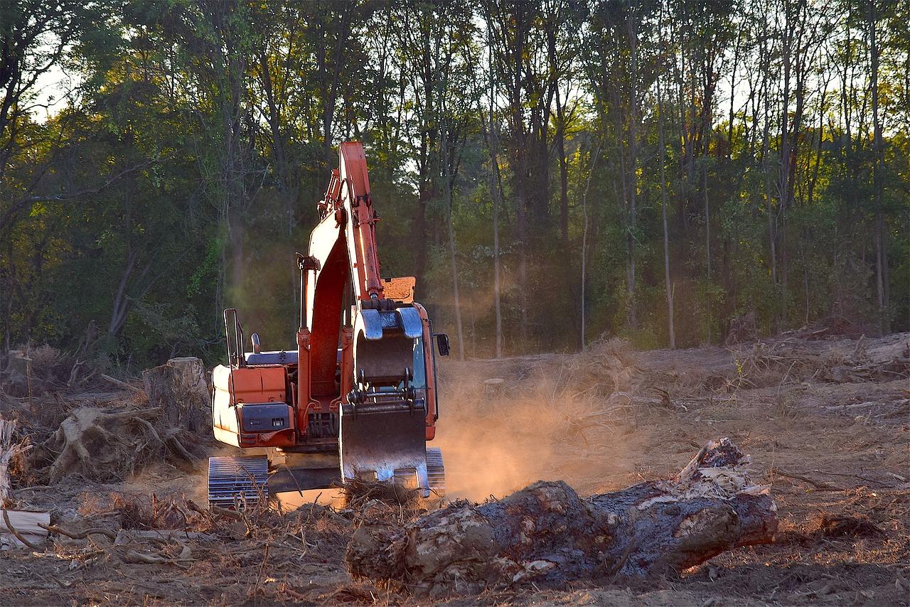 Deforestation machine in action.